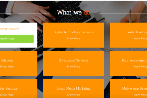 it management firm